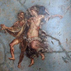 museo archeologico napoli affreschi pompei casa dei dioscuri coppia in volo